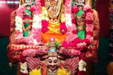Grand New Year and Vaikunda Ekadasi Celebrations at Sri Meenakshi Temple