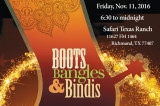 Indo American Forum of Fort Bend Gets Ready to Celebrate the Spirit of the Holidays