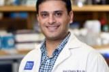 New Breakthrough in Understanding Obesity, Metabolic Syndrome