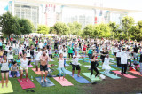 Third International Day of Yoga, Celebrate the Spirit and Power of Yoga on June 21