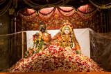 Spectacular Sri Krishna Janmashtami 2017 by Hindus of Greater Houston & ISKCON of Houston