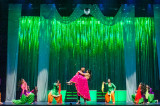 Dil Se Naach 2017 Returns to Berry Center