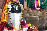 Shivratri, The Great Night of Lord Shiva, Celebrated at Sanatan Shiv Shakti Mandir