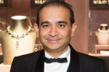 Nirav Modi flees to United Kingdom, claiming political asylum: Report