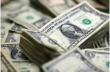 Indian-Americans donate $1 billion a year: Survey