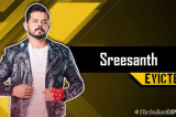 Sreesanth is the first runner-up of Bigg Boss 12 as Dipika Kakar takes crown