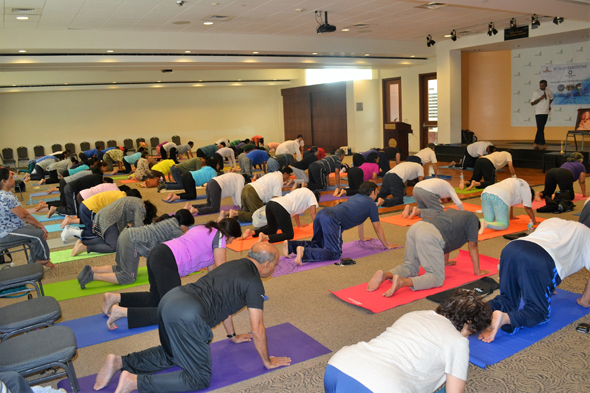 Participants deeply invovled in Yoga practice.