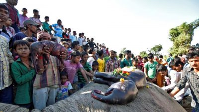 People prepare to bury a female elephant and two foetuses, who according to the forest officials were killed after being hit by a train in the Hojai district of Assam. (Reuters File Photo)