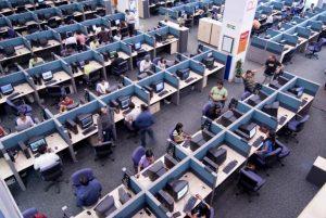 Work in an IT company (Mint)