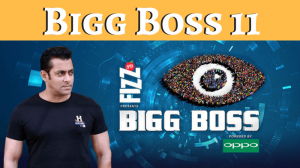 Bigg-Boss-11-contestants-list-1