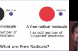The Healthy Dose: Free Radicals Part 1