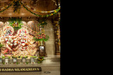 ISKCON Temple in  Houston is a Year Old