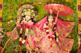Sri Govindaji Gaudiya Matha Celebrates 2nd Anniversary Festival