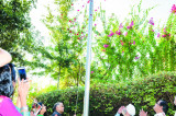 Independence Day Flag Hoisting at Consul General's Residence