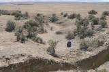 3 Small Earthquakes Rattle Central Arizona and Phoenix Area