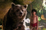 The Jungle Book has earned Rs 74 crore in first week and it's a big deal