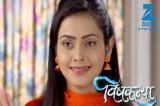 Vardaan to die in Zee TV's Vishkanya