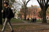 No cap on visa for Indian students: British envoy