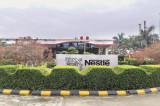 How Nestle is rebuilding in India—18 months after the Maggi ban