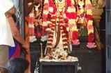 Masi Magam Celebrations at  Sri Meenakshi Temple