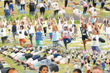 Alliance to Promote Yoga in the City on IDY