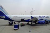 IndiGo's grounded planes may be costing it thousands of dollars daily