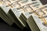 India's forex reserves rise to life-time high of 424.361 billion dollars