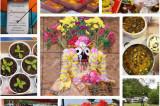 Akshaya Tritiya : The Countdown for Jagannatha Ratha Jatra Begins