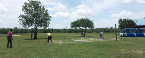 Cricket fun at the picnic.