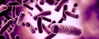 346x136_antibiotic_resistance_survey