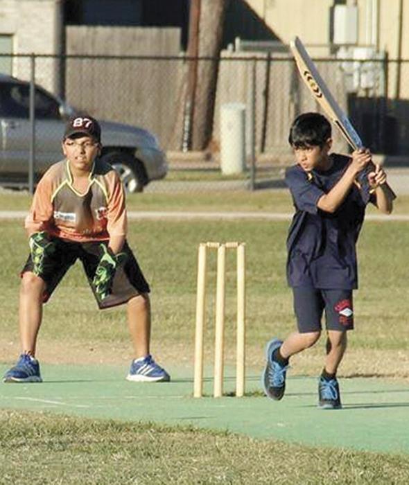 cricket 3in