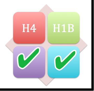 H1B-and-H4-FY-2013-Visa-Stamping-Chennai-2012