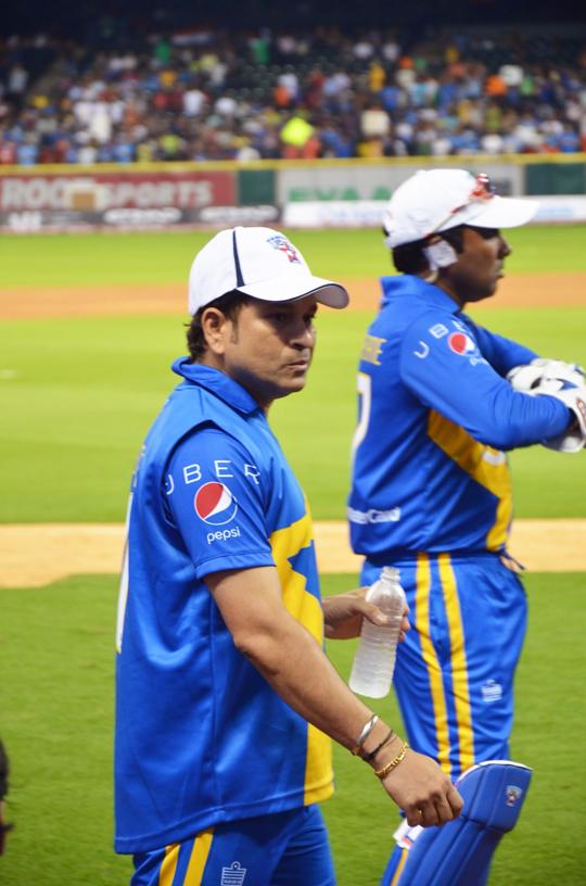 Cricket 6in