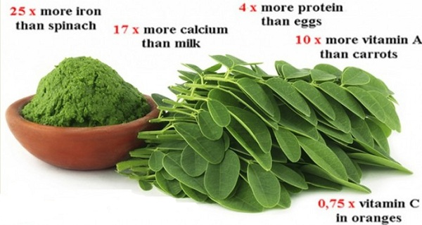 BREAKING-STUDY-THIS-GREEN-HERB-COULD-BE-THE-CURE-TO-5-DIFFERENT-TYPES-OF-CANCER-INCLUDING-OVARIAN-LIVER-LUNG-AND-MELANOMA