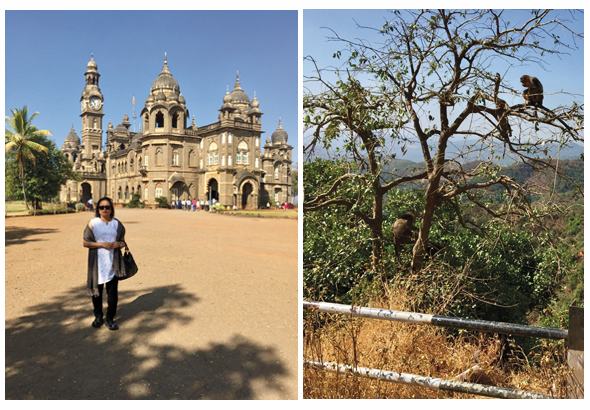 One of the sights of Kolhapur is the New Palace (left). The royal family stays in the upper floors and the public museum is on the ground floor. The road from Kolhapur to the Konkan coast goes through the mountainous ghats. Scenic spots along the highway are frequented by monkeys.