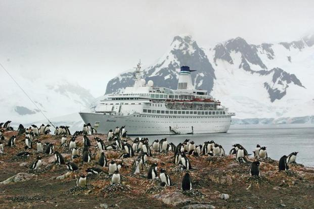 A ship passing through the Antarctic Peninsula. Photo: iStockphoto
