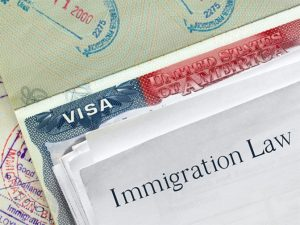 immigration-law-